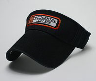 Patch Visor