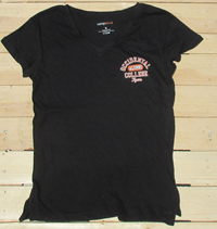 Ladies  Left Chest Logo Alumni  V-Tee