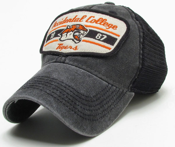 Hat Dashboard Trucker