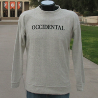 Crew Neck Vintage Pullover Occidental