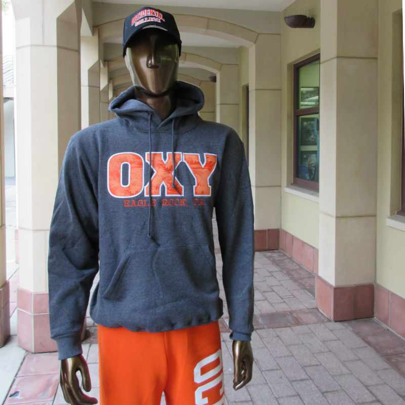Sweatshirt Hooded Oxy Palm Eagle Rock Graphite (SKU 1180550223)