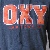 SWEATSHIRT HOODED OXY PALM EAGLE ROCK GRAPHITE