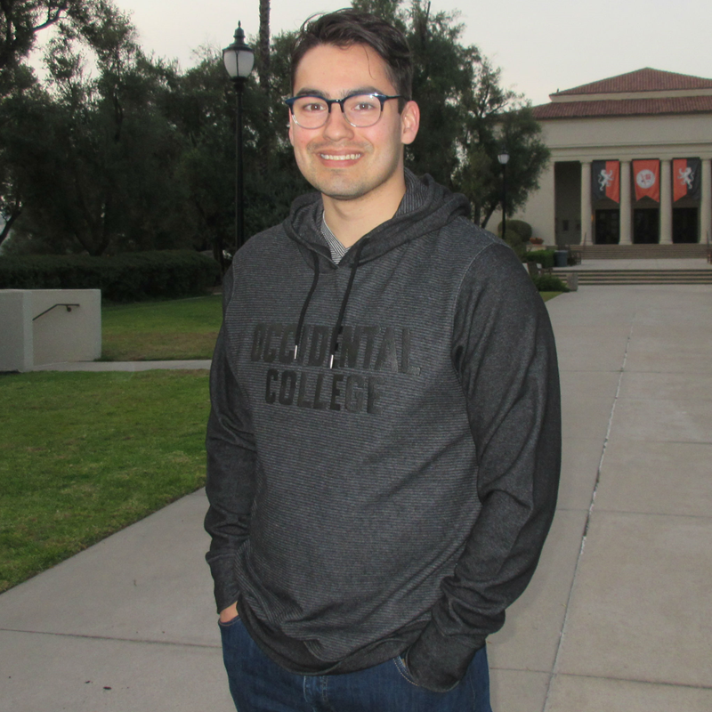 Sweatshirt Hooded Black Tonal Occidental College (SKU 1181663823)